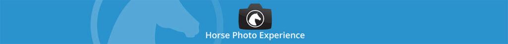 Horse Photo Experience - de plek om te leren over paardenfotografie