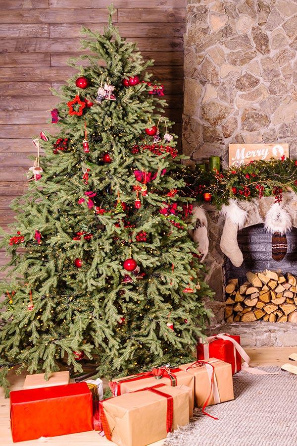 Je kunt de boom en de cadeautjes in zijn geheel op de foto zetten